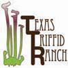 The Texas Triffid Ranch - Odd Plants and Oddities