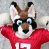 huscoon userpic