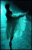 rhythms_adance userpic