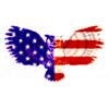 filin7 USA-flag