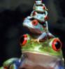 Nicosian: frogstack
