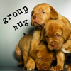 Anissa Roy: Group Hug