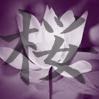 ashling_1986: Sakura