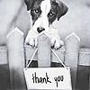 Manu: thanks