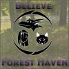 Forest Haven Default