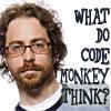 code monkey think?