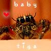 JV: babytiga3