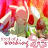 Pokemon - Working