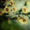 timecankill userpic