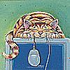 catsbycat