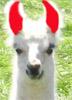 Devill Llama
