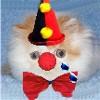 tearsofafrinkle userpic