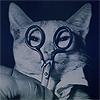 ;: » i am a cat.