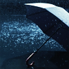 Stock_umbrella
