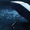 Stock_umbrella