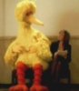 Cj: CJ and Big Bird