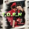 zaq: TORN