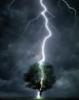 thunder.