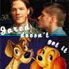 Nicole: Jensen/Jared = Lady & the Tramp