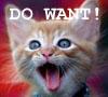xvolph: Do want