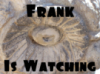 Carrie Leigh: Frank the creepy ass owl