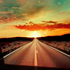 The Dork: Open road