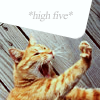 *high 5*