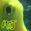 missspottyjane userpic