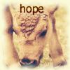 sara_merry99: Bison Hope