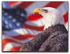 Des: Patriotic