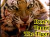 Des: Don't Taunt the Tiger