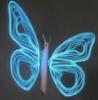 papillon_denuit userpic