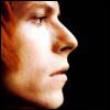 Bowie profile