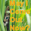 Sandy (aka DeeRich): May I Come Out Now?