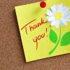 winterlillies: thank you