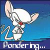 Three Days of Violence Against Vegtables: Pinky and The Brain - Brain/Pondering