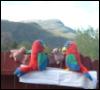 nm-parrots-bats