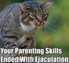 cat - bad parenting