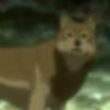 Blur Wolf