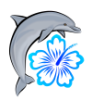 hawaiidolphin