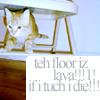 lava floor kitteh