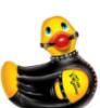 bondage rubber ducky
