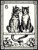 selva oscura: [cats tarot] lovecats