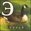 gubern userpic