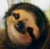 Adrian: sloth!