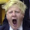 Boris yawning