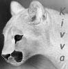 kivva userpic
