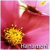 Hanamoni