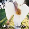 Megami Melody