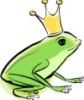 eithni: froggie crown